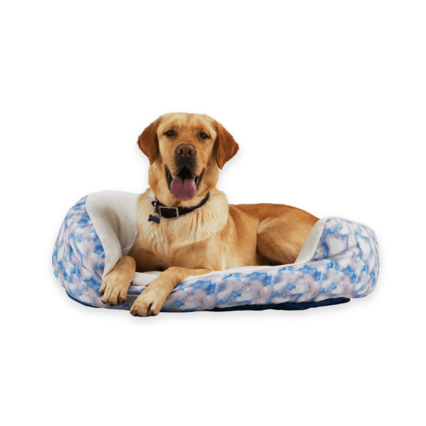 Petco-Up to 50% Off Select Dog Beds & Throws