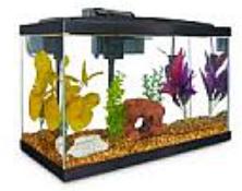 Aqueon Standard Glass Aquarium Tank 10 Gallon