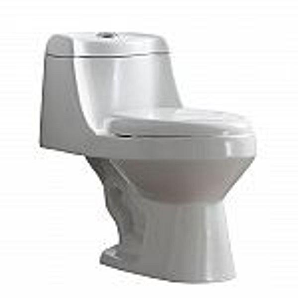 Glacier bay Fenwick 1-pc 1.6 GPF/1.1 GPF Dual Flush Toilet