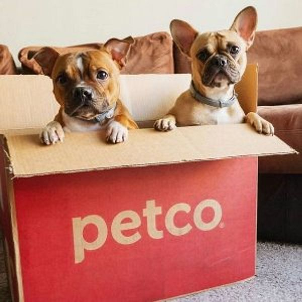 Petco Select New Dog Essentials on Sale