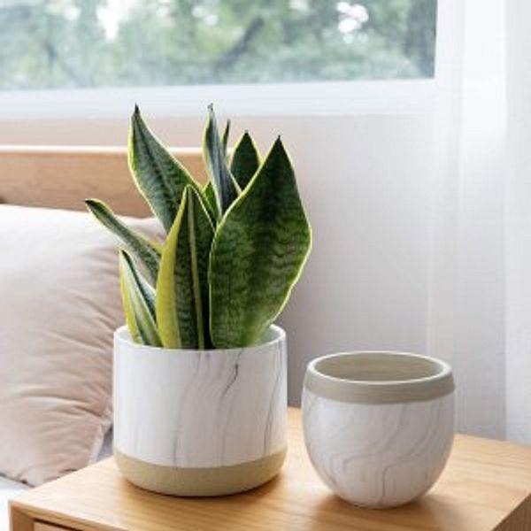 LA JOLIE MUSE White Ceramic Flower Plant Pots, 6.5 + 4.9 Inch Indoor Planters