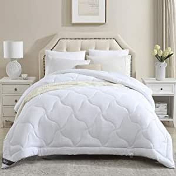 Eterish Comforters for Queen Bed