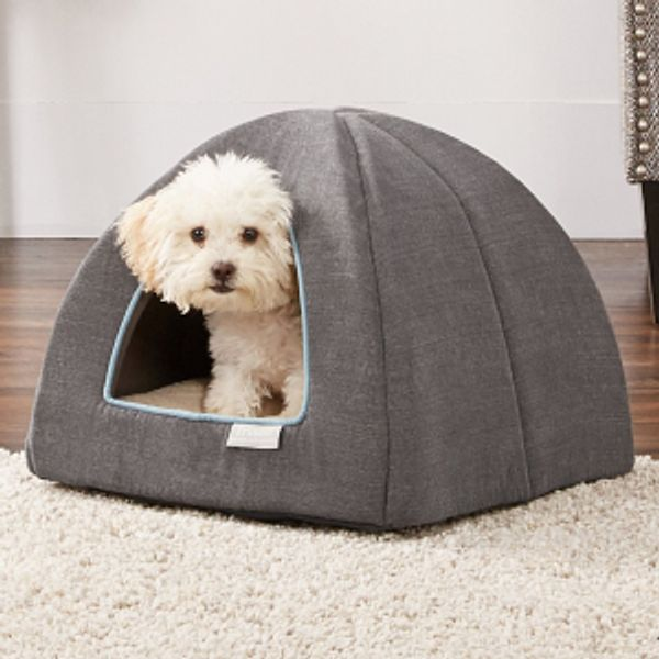Chewy Cat & Dog Bed Flash Sale