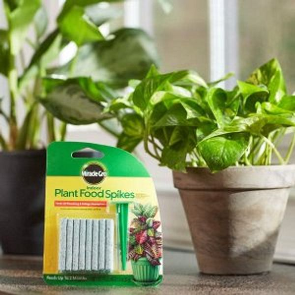 Miracle-Gro Indoor Plant Food, 24-Spikes