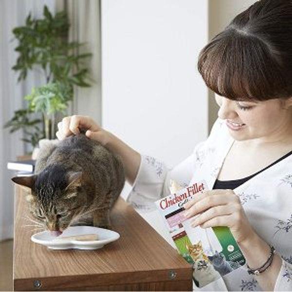 Amazon Pet supplies on sale