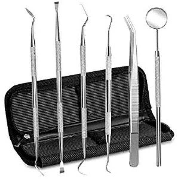Epartswide Dental Tools Stainless Steel Dental Pick Dental Floss Dental Hygiene Tool Set
