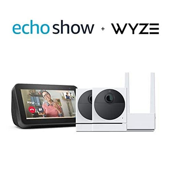 Two Wyze Cam Outdoors and Echo Show